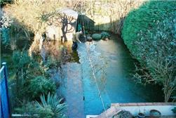 David Macdonald, BGS © NERC 2003 - a garden in Oxford flooded by groundwater